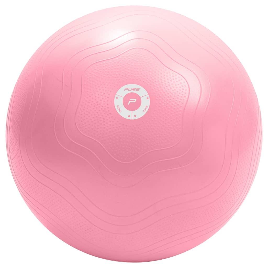 Pure2Improve Oefenbal 65 cm roze