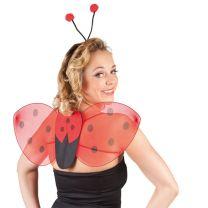 Verkleedset Lieveheersbeestje