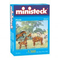 Ministeck Paarden, 1500st.