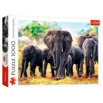 Puzzel Afrikaanse Olifanten, 1000st.