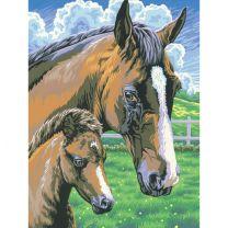 Schilderen Op Nummer Paard met Veulen