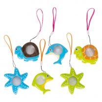 Caleidoscoop Zeedieren